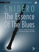 The Essence Of The Blues
