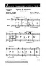Hymne an die Nacht
