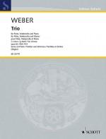 Trio G minor op. 63 WeV P.14