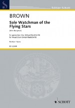Sole Watchman of the Flying Stars